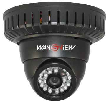 Dual Code stream Dome IP Camera